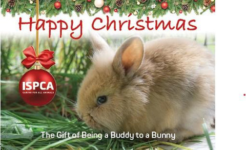 Be a buddy to a bunny - Hoppy Christmas