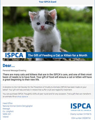 Feed a Cat or Kitten for a Month