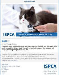 Clean Bill of Health for a Cat