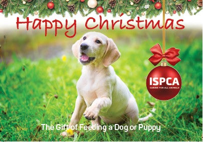 The Gift of Feeding a Dog or Puppy this Christmas