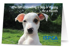 Feed a Dog or a Puppy for a Month