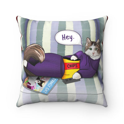 Cat throw pillow. Cat with remote. Funny throw pillow.
