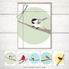Bird notecard set