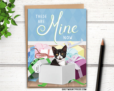 Funny birthday card with cat in boxes