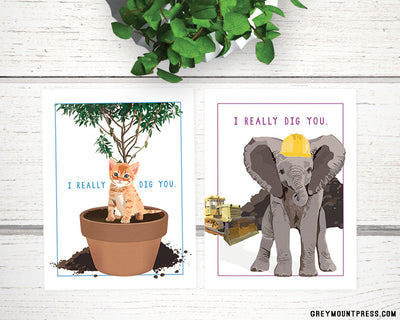 """I really dig you"" Small Classroom-style mixed Valentine Packs"