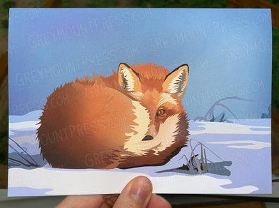 Holiday REPRINT DISCOUNT: 15-Pack of Fox Curled in Snow Card