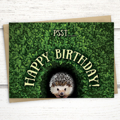 hedgehog birthday card for conservationist