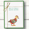Funny duck christmas cards