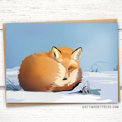 Fox curled in snow holiday greeting card