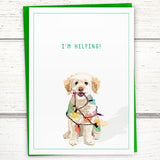 "Holiday: Mika the poodle-mix's ""I'm Helping!"" holiday card, 5""x7"" - Greymount Paper & Press"