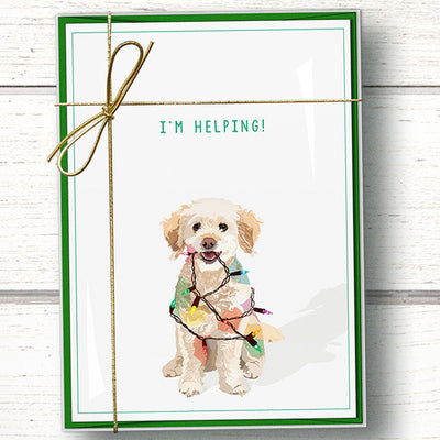Funny dog Christmas cards boxed set