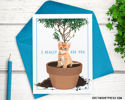 "I Really Dig You naughty kitten card, A6 (4.5""x6"") - Greymount Paper & Press"