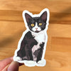 Tuxedo cat laptop sticker. Cat waterbottle sticker.