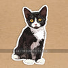 Cat: Tuxedo Cat Sticker