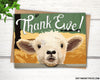 Thank ewe lamb thank you card