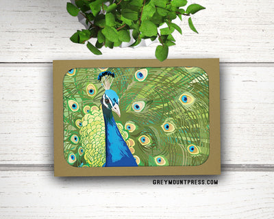 Blank notecard set with peacock design