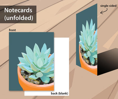 Succulent notecard set with 5 designs