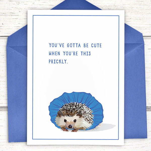"Our tutu hedgie: ""You've gotta be cute when you're this prickly"" Hedgehog greeting card"