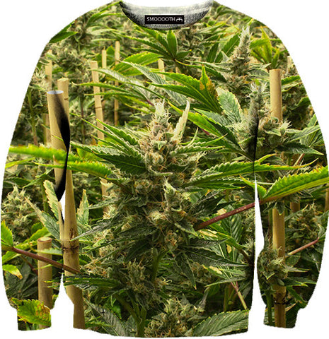 Big bud 100% Cotton Sweatshirt