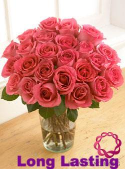 One Dozen Rich Pink Roses