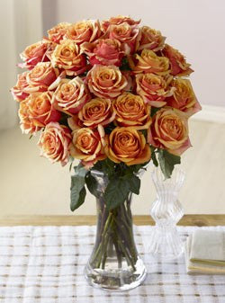 Two Dozen Majestic Sunset Roses