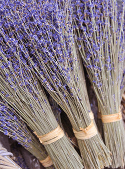 Dried Lavendar FREE SHIPPING UPS Ground