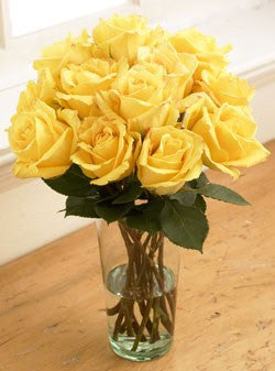 One Dozen Yellow Sunshine Roses