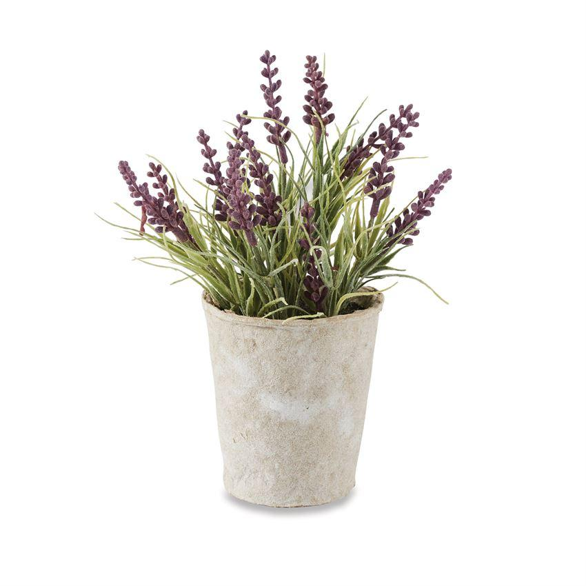 Mud Pie Lavender Pot-Mud Pie-BeautyOfASite | Beauty, Fashion & Gourmet Boutique