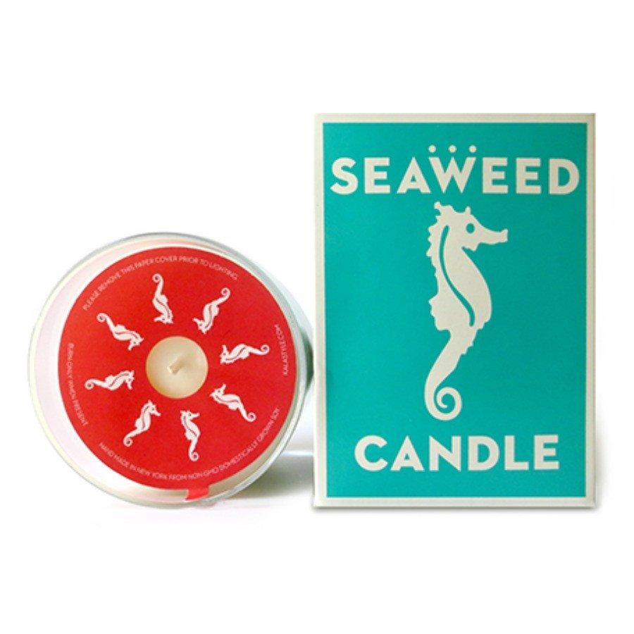 Swedish Dream Seaweed Candle - 10 oz-Swedish Dream-BeautyOfASite | Beauty, Fashion & Gourmet Boutique