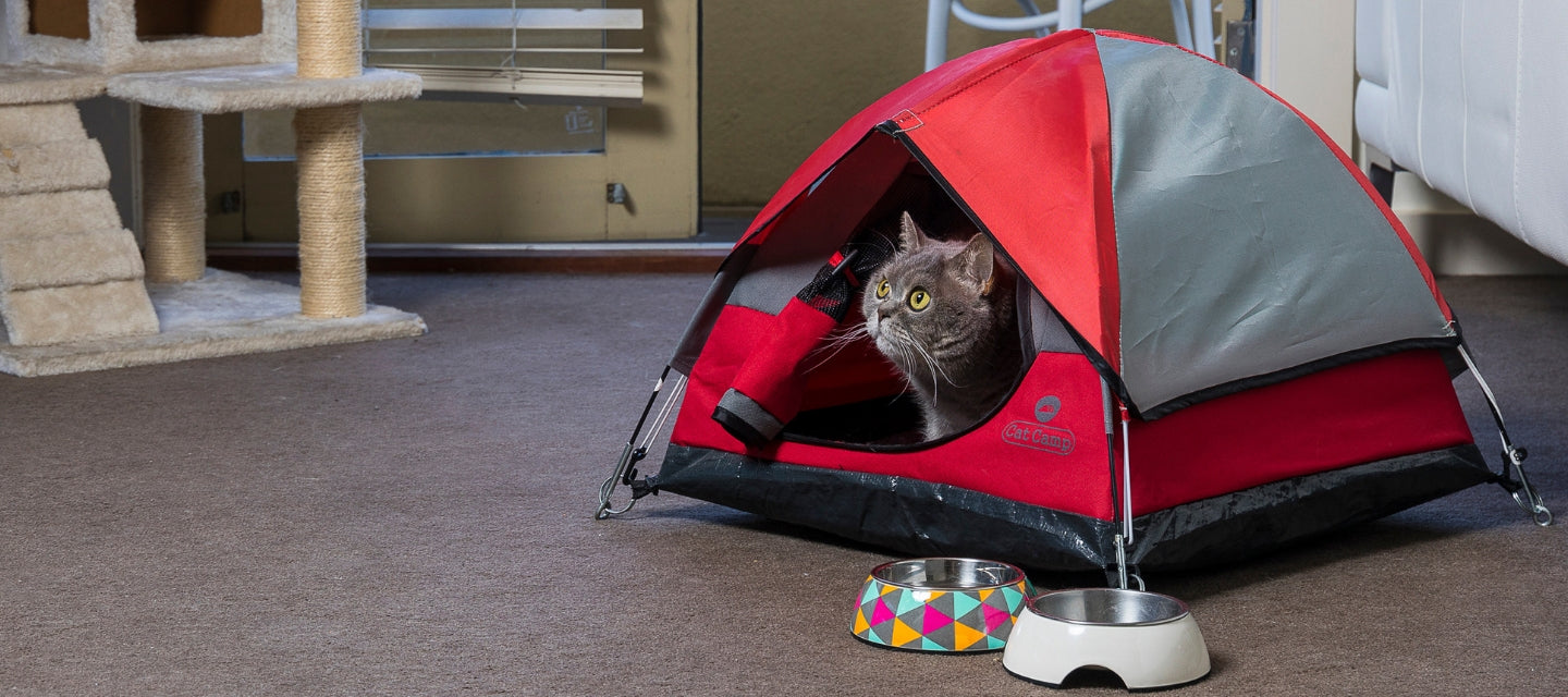 Cat Camp Tent Bed