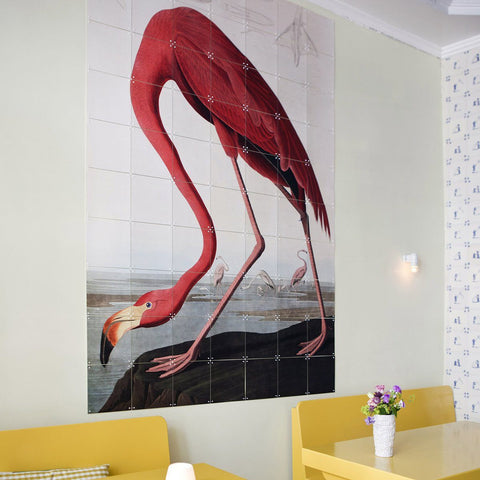Flamingo (Audubon) Wall Art