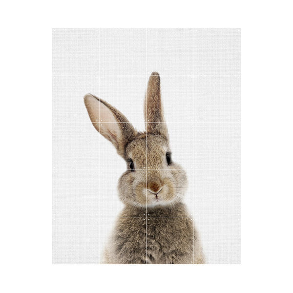 Rabbit (Double Sided) Wall Art