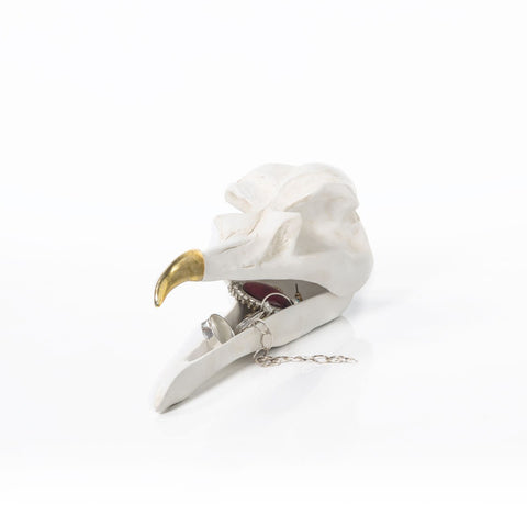 Bird Skull Jewellery Keeper