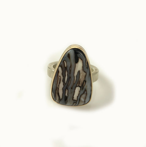 fossilized channel wood ring