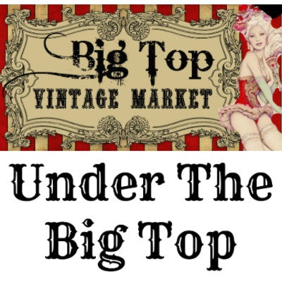 Covered Spot - Under The Big Top - Old Town Spring - February 24 & 25, 2018