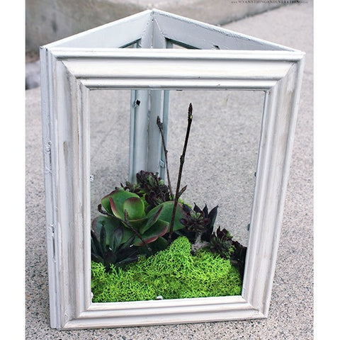 2 - Saturday at 1:00pm - Cottage Chic Succulent Decor