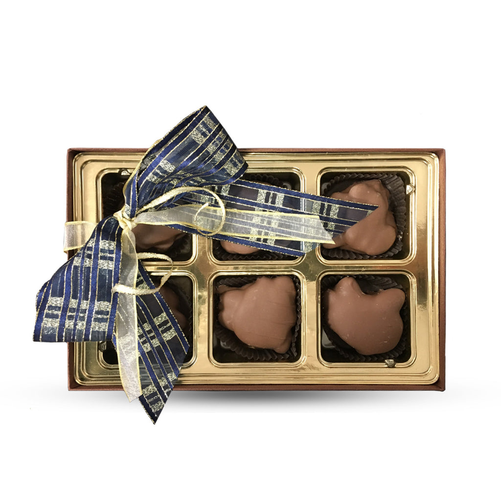 6 Piece Chocolate Turtle Gift Box