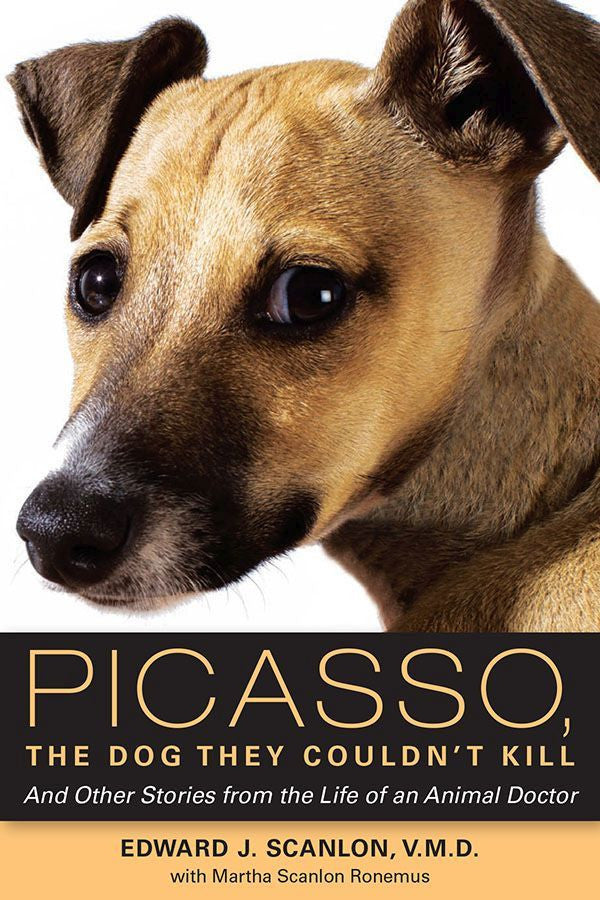 Picasso, The Dog They Couldn't Kill: And Other Stories From the Life of an Animal Doctor