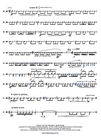 Snare Drum Solo by George - Choose Your Own Adventure (CYOA) - Score Example