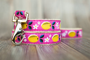 Pink Lemonade Hemp Lead