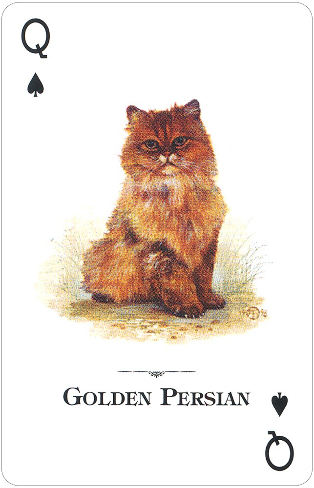 Cats of the Natural World Playing Cards