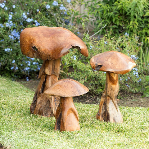 Habini Teak Wild Mushrooms - Om Gallery