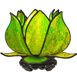 Baby Blooming Lotus Lamp, Lime