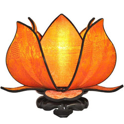 Baby Blooming Lotus Lamp, Sun
