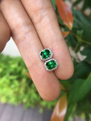 Natural Tsavorite Earrings (GE113)