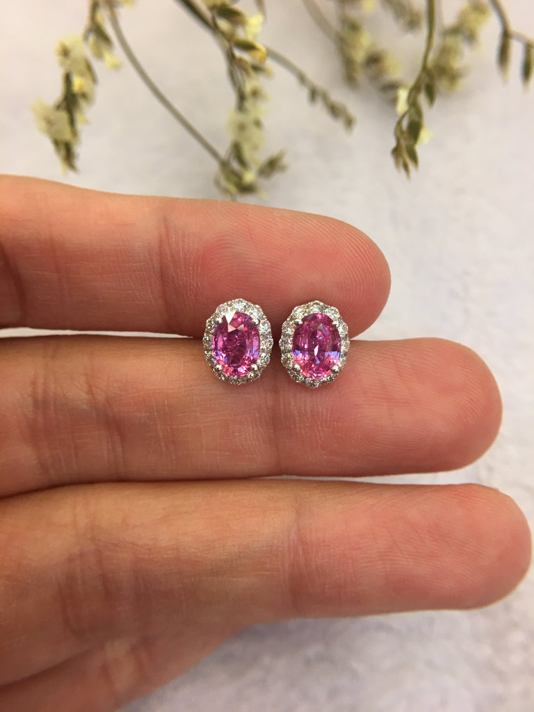 Natural Pink Sapphire Earrings (Unheated) (GE028)