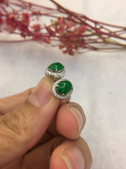 Green Jade Earrings - Cabochon (EA282)