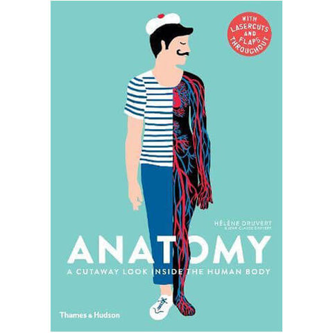 Anatomy: A Cutaway Look Inside the Human Body by Hélène Druvert & Jean-Claude Druvert