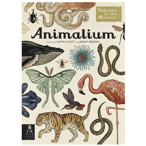 Animalium by Katie Scott & Jenny Broom - Junior Edition  - 1