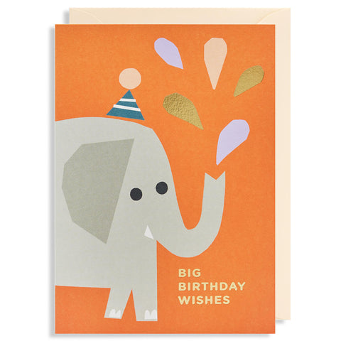 Big Birthday Wishes Greetings Card by Ekaterina Trukan for Lagom Design - Junior Edition